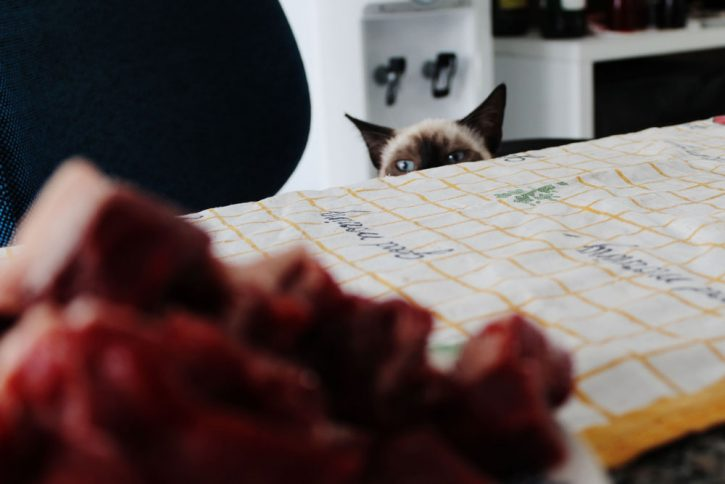 cat looks over the edge of a table